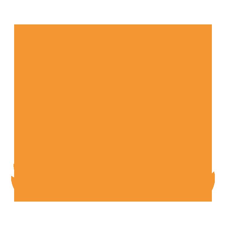 icon-good-website-hosting-orange